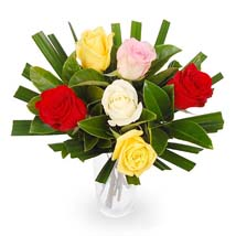 6 Mixed Roses Wrapped In a Paper: