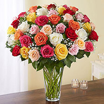 Bunch of 50 Assorted Roses In Glass Vase: Congratulations Flower Bouquet