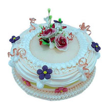 Snowy white treat: Birthday Designer Cakes