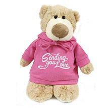 Soft Messenger Mascot Bear With Pink Hoodie: Childrens Day Gifts