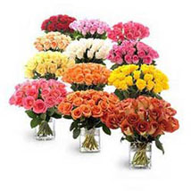Twelve Bouquets of Roses: Anniversary Gifts to Fujairah