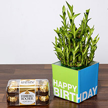 3 Layer Bamboo Plant and Chocolates For Birthday: Chocolates to Fujairah