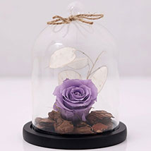 Purple Forever Rose In Glass Dome: