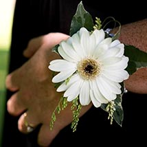 Gorgeous White Gerbera Corsage: Flower Jewellery