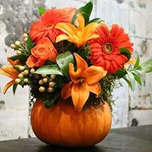 Pumpkin Floral Arrangement: Halloween Gift Ideas