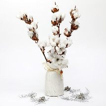 Forever and Alluring Beauty: Dried Flower Bouquet